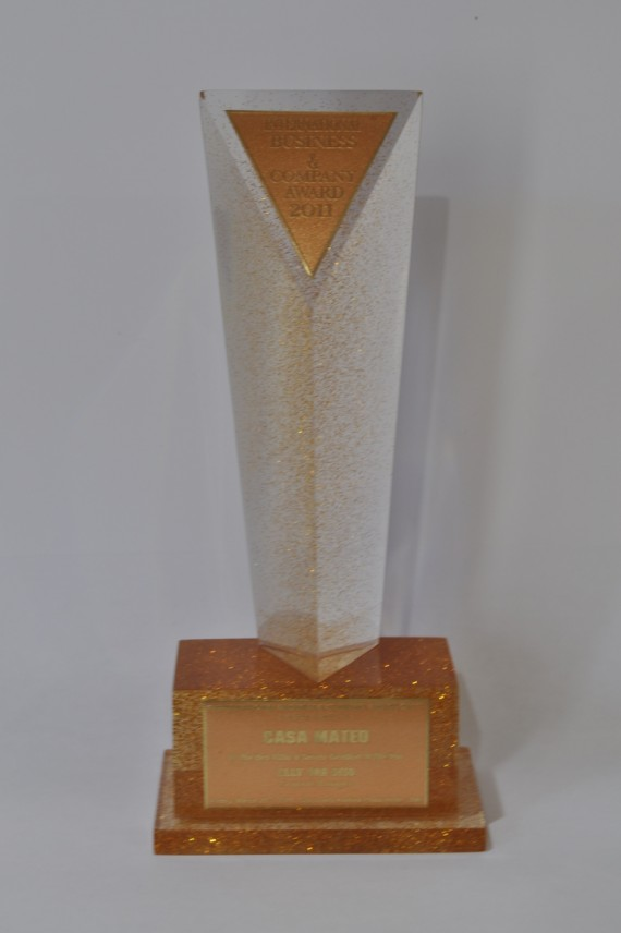 International Business & Company Award 2011